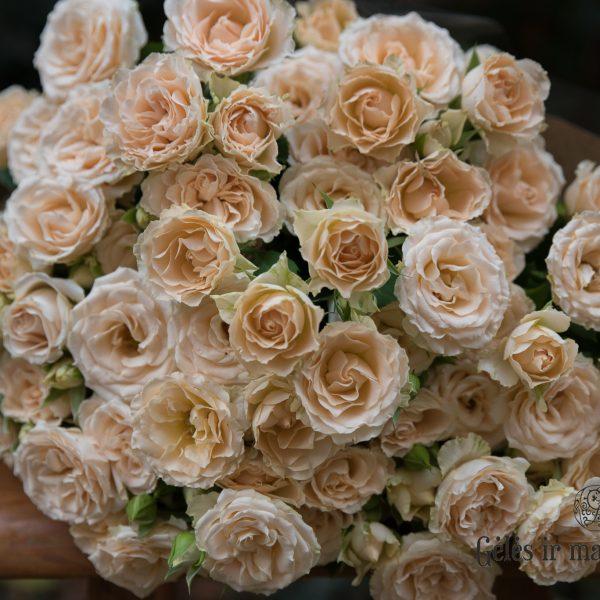 Gėlės manufauk
