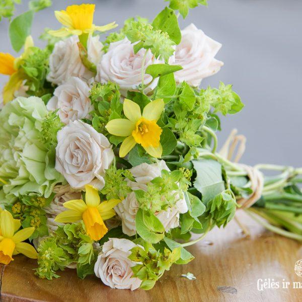 narcizai puokštė narcissus flowers gėlės vilniuje skintos