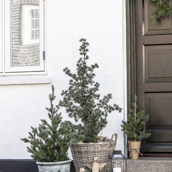 christmas tree eglutės basket pintas krepšys eglė kaledos kalėdinis gėlės ir manufaktūra iblaursen 8624-14
