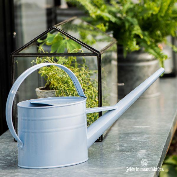 watering can zinc metalinis dusty blue žydras laistytuvas gėlės ir manufaktūra