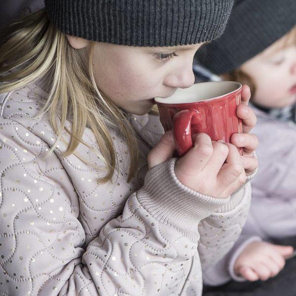 mug cup puodelis puodukas mynte strawberry red raudonas raudonos spalvos gėlės ir manufaktūra braškių