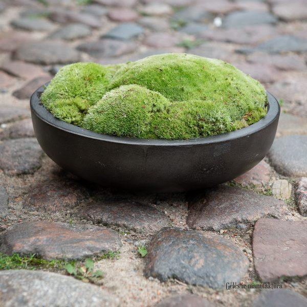 samanos indas kompozicija dubuo moss arrangement gėlės ir manufaktūra