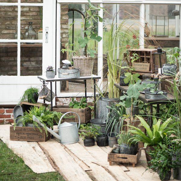 vazonas augalai kambarinis urban garden metalinis vazonai nusvirusios rankeneles gėlės ir manufaktūra iblaursen plants pots handles 5640-18