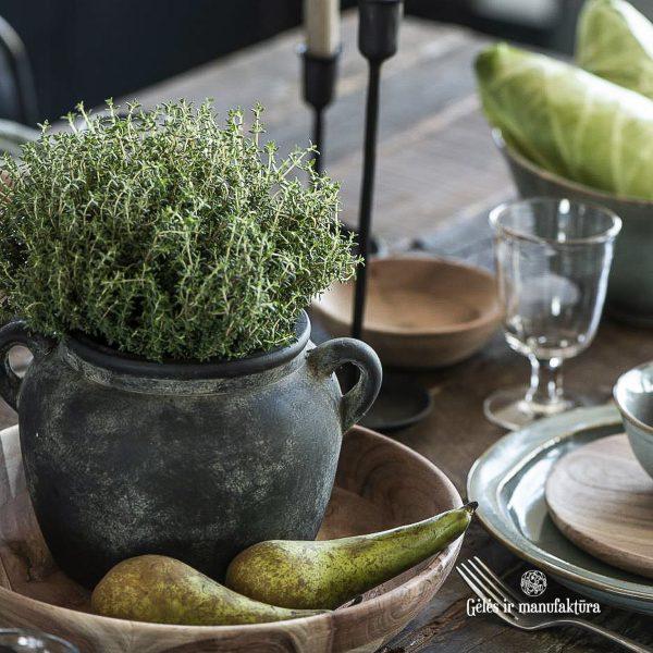 vazonas pots Athen with ears ceramic indas handmade keramika vaza rustic gėlės ir manufaktūra 1307-00 iblaursen kambariniai augalai