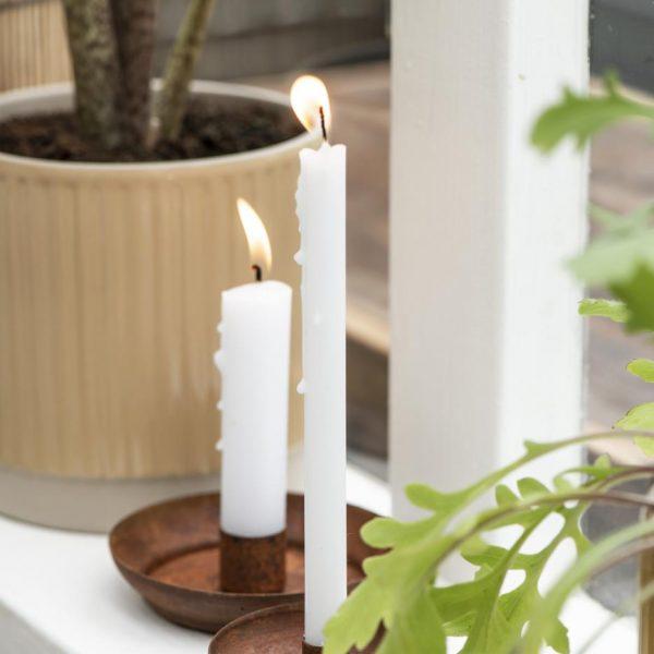 candle taper white plona žvakė žvakelė balta iblaursen gėlės ir manufaktūra balta