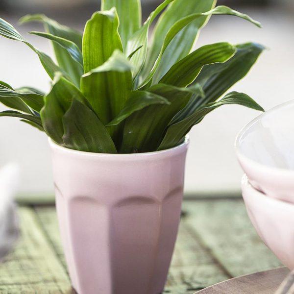 mug caffe latte mynte english rose pink kavos puodelisrožinis spalvos gėlės ir manufaktūra iblaursen 2042