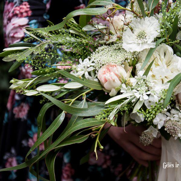 balta vasarine scabiosa eukaliptas nuotakos puokste bridal bouquet
